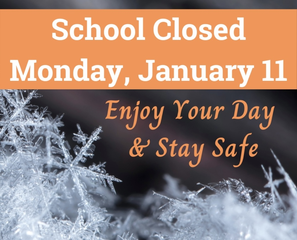 school closed 1-11